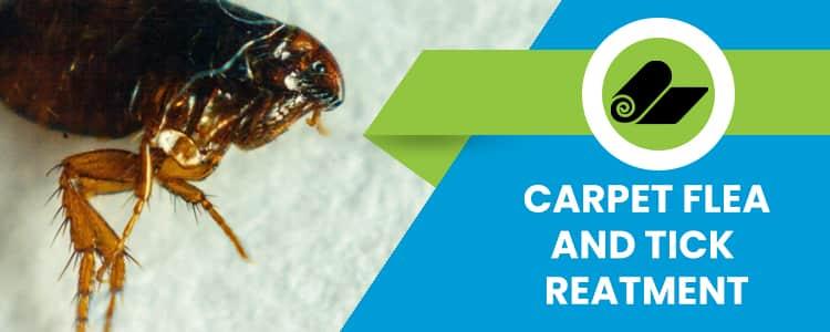 Carpet Flea and Tick Treatment