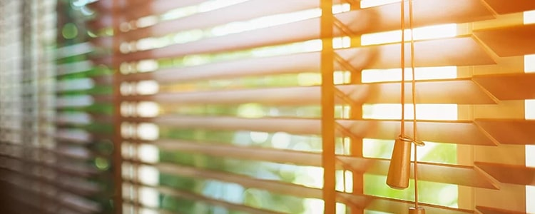 Best Curtains And Blinds Cleaning Red Hill